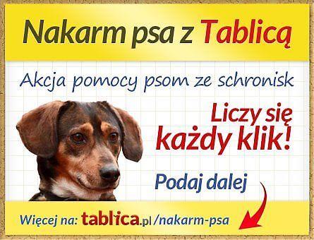 Nakarm psa z Tablicą