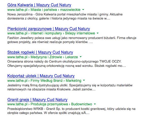 Menu nawigacyjne w SEOKatalog w Google