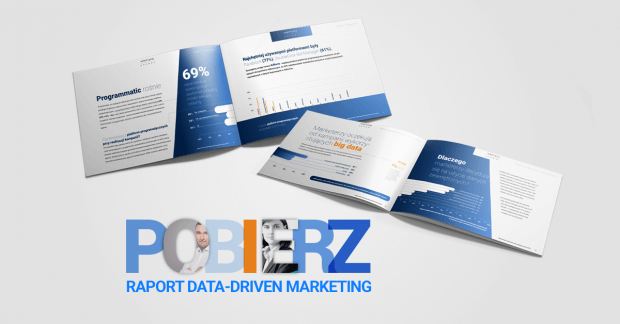 Raport Data-driven marketing